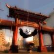 Kung Fu Panda 2 Resimleri 7