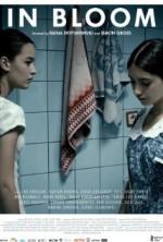 Hayatın Baharı (2013) afişi