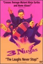 3 Küçük Ninja (1992) afişi