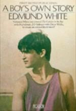 A Boy's Own Story (1998) afişi