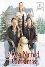 A Dog Named Christmas  afişi