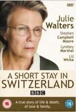 A Short Stay in Switzerland (2009) afişi