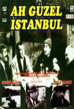Aah Güzel istanbul (1966) afişi