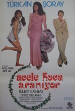 Acele Koca Aranıyor (1975) afişi