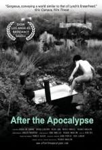 After The Apocalypse (2004) afişi
