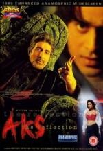Aks (2001) afişi