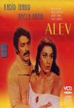 Alev (1976) afişi