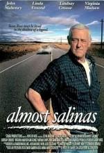 Almost Salinas (2001) afişi