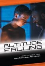 Altitude Falling (2010) afişi