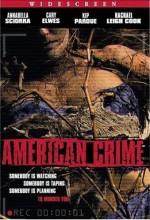 Amerikan Suçu (2004) afişi