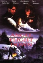 Angel Flight Down (1996) afişi