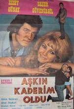 Aşkım Kaderim Oldu (1972) afişi