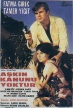 Aşkın Kanunu (1966) afişi