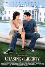 Aşkın Peşinde (2004) afişi