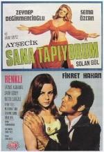 Ayşecik Sana Tapıyorum (1970) afişi
