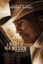 Eski Meksika'da Bir Gece (2013) afişi