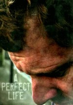A Perfect Life (2011) afişi
