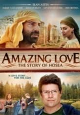 Amazing Love (2012) afişi