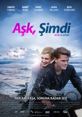 Aşk, Şimdi (2012) afişi