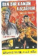 Ben Bir Kanun Kaçağıyım (1966) afişi