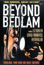 Beyond Bedlam (1994) afişi