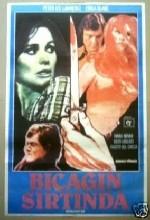 Bıçağın Sırtında (1973) afişi