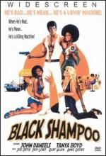 Black Shampoo (1976) afişi