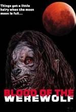 Blood Of The Werewolf (2001) afişi
