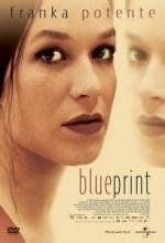 Blueprint (2003) afişi
