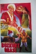 Bozkurt Obası (1954) afişi