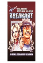Breakout (ı)