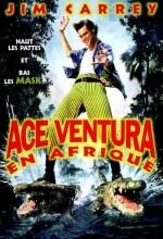 Budala Dedektif 2 (1995) afişi
