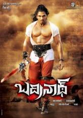 Badrinath (2011) afişi