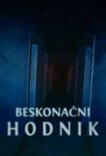 Beskonacni hodnik (2013) afişi