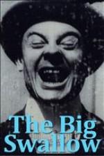 The Big Swallow (1901) afişi