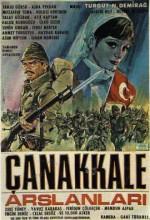 Çanakkale Aslanları (1964) afişi