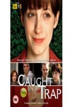 Caught In A Trap (2008) afişi