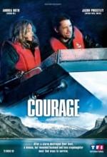 Cesaret (ı) (2009) afişi