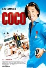 Coco (2009) afişi
