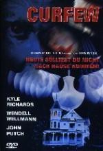 Curfew (1989) afişi