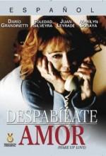 Despabílate Amor (1996) afişi