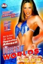 Different Worlds (2002) afişi