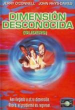 Dimensión Desconocida (1995) afişi