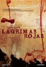Do Risos E Lagrimas (1926) afişi