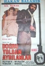 Doğru Yoldan Ayrılanlar (1976) afişi