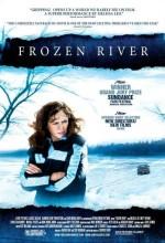 Donmuş Irmak (2008) afişi