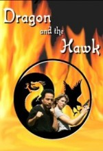 Dragon And The Hawk (2001) afişi