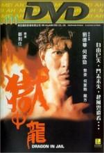 Dragon in Jail (1990) afişi