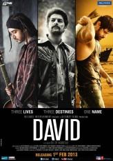 David (2013) afişi