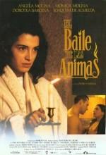 El Baile De Las ánimas (1994) afişi